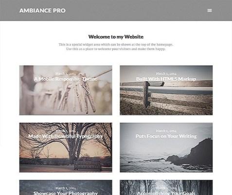 StudioPress Ambiance Pro WordPress Theme