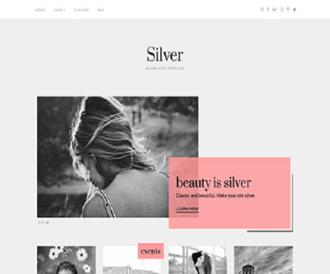 silver wordpress theme
