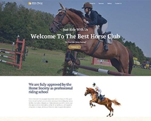 Premium Moto Theme Horse Club 1