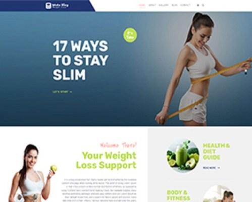 Premium Moto Theme Weight Loss Blog
