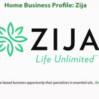 Home Business Profile: Zija