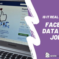 Real or Scam: Facebook Data Study Job