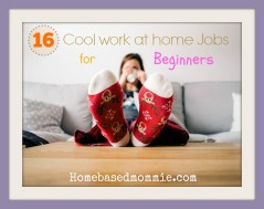 16 Cool Work at home Jobs for Beginners