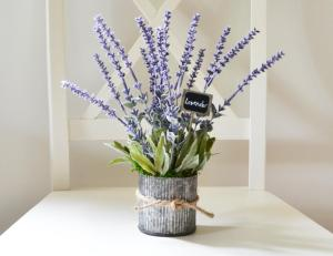 Lemon Leaf Market - Lavendar in a Rustic Galvanized Pot