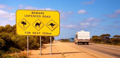 Conducir_en_Australia_licencia.jpg