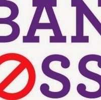 What's wrong with the 'Ban Bossy' campaign?