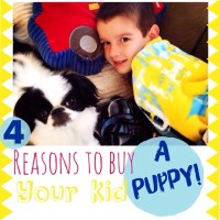 4 reasons to buy your kid a puppy!