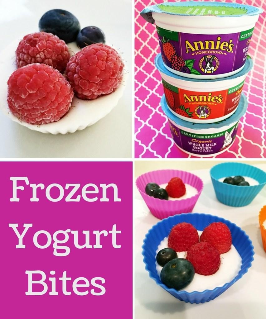 frozen yogurt bites