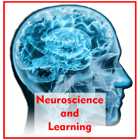 Brain Based Learning and Neuroscience – What the Research Says!