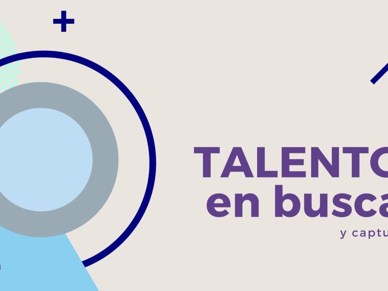Workpinion_talento