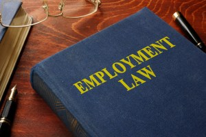 Employment tribunal - employee support
