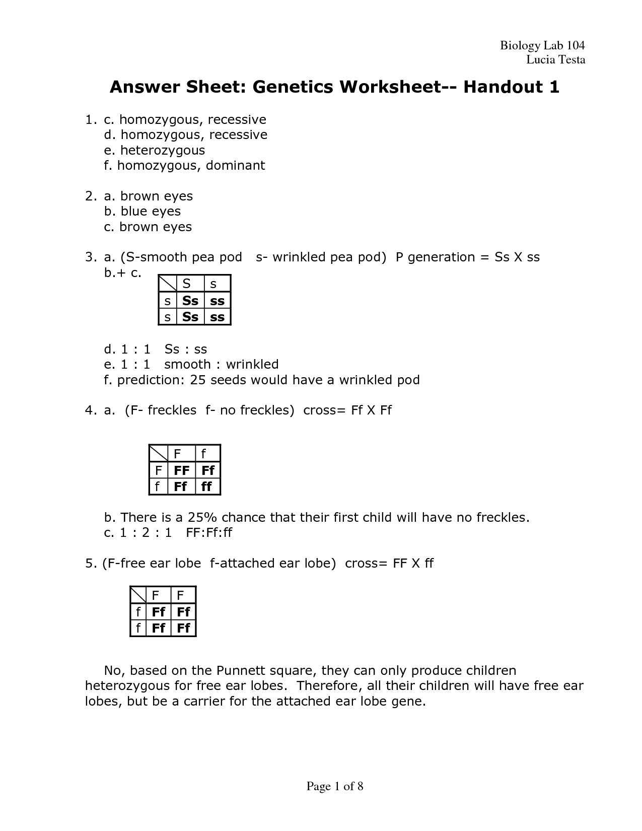 19 Best Images Of The Genetic Code Worksheet Answers
