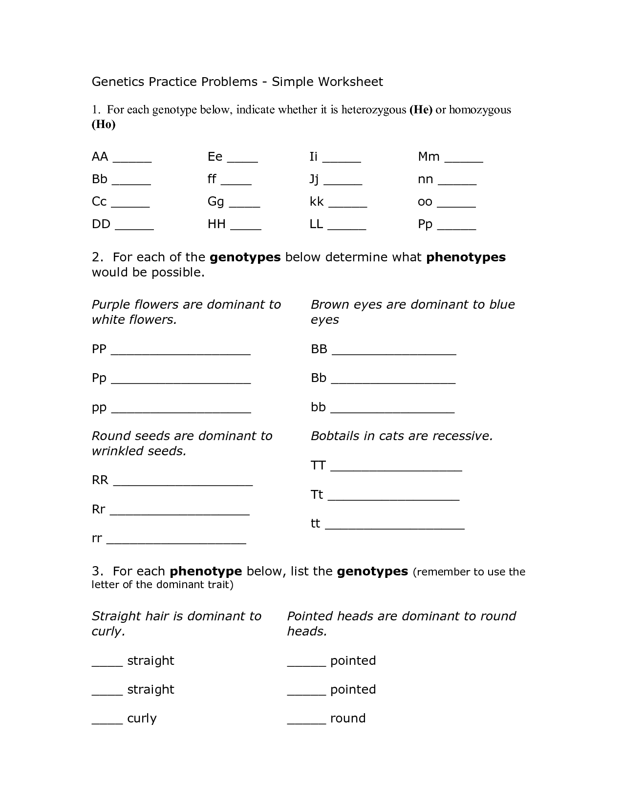 Mutations Worksheet Discussion Questions Answers