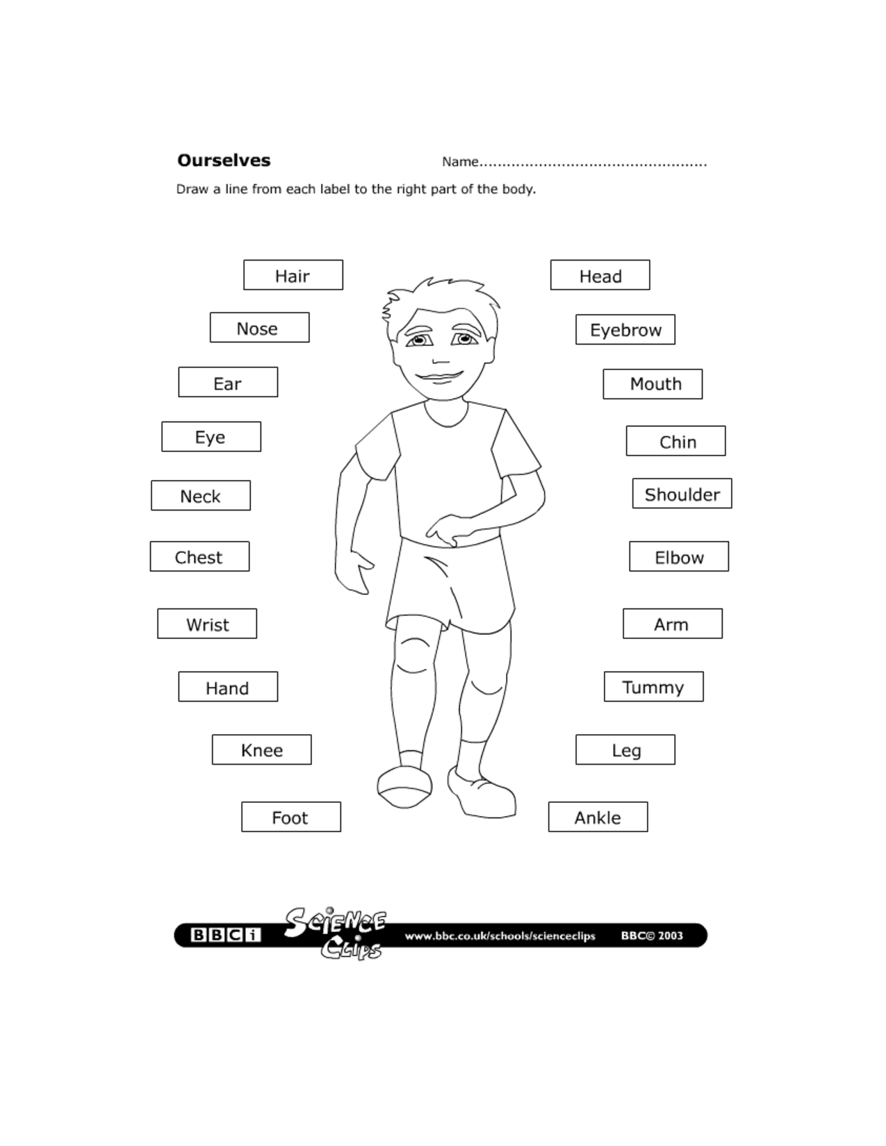 Body Christ Worksheet