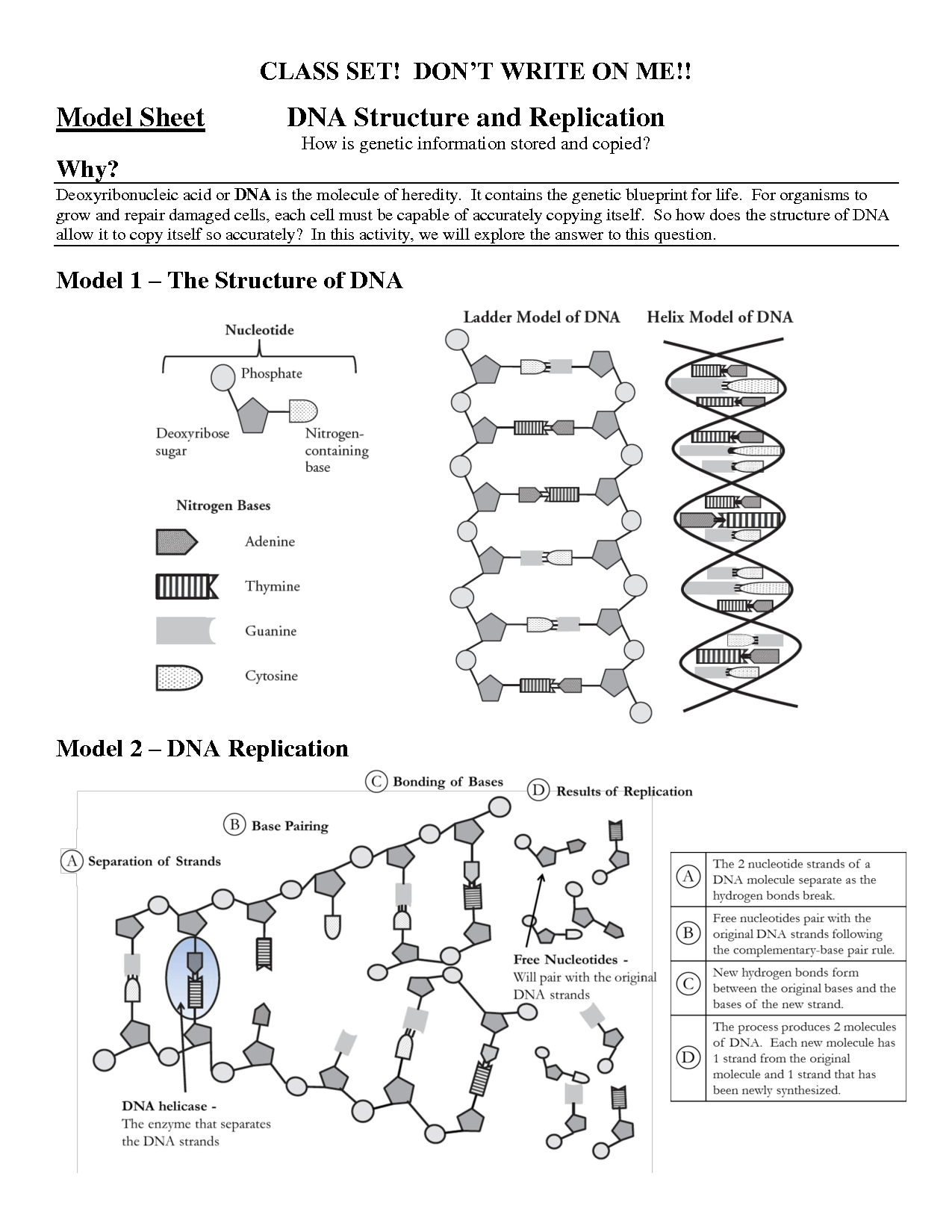 12 Best Images Of Dna The Molecule Of Heredity Worksheet