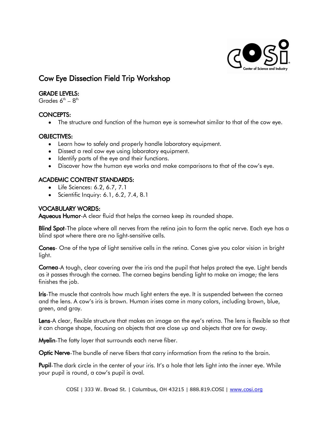 14 Best Images Of Eye Diagram Worksheet