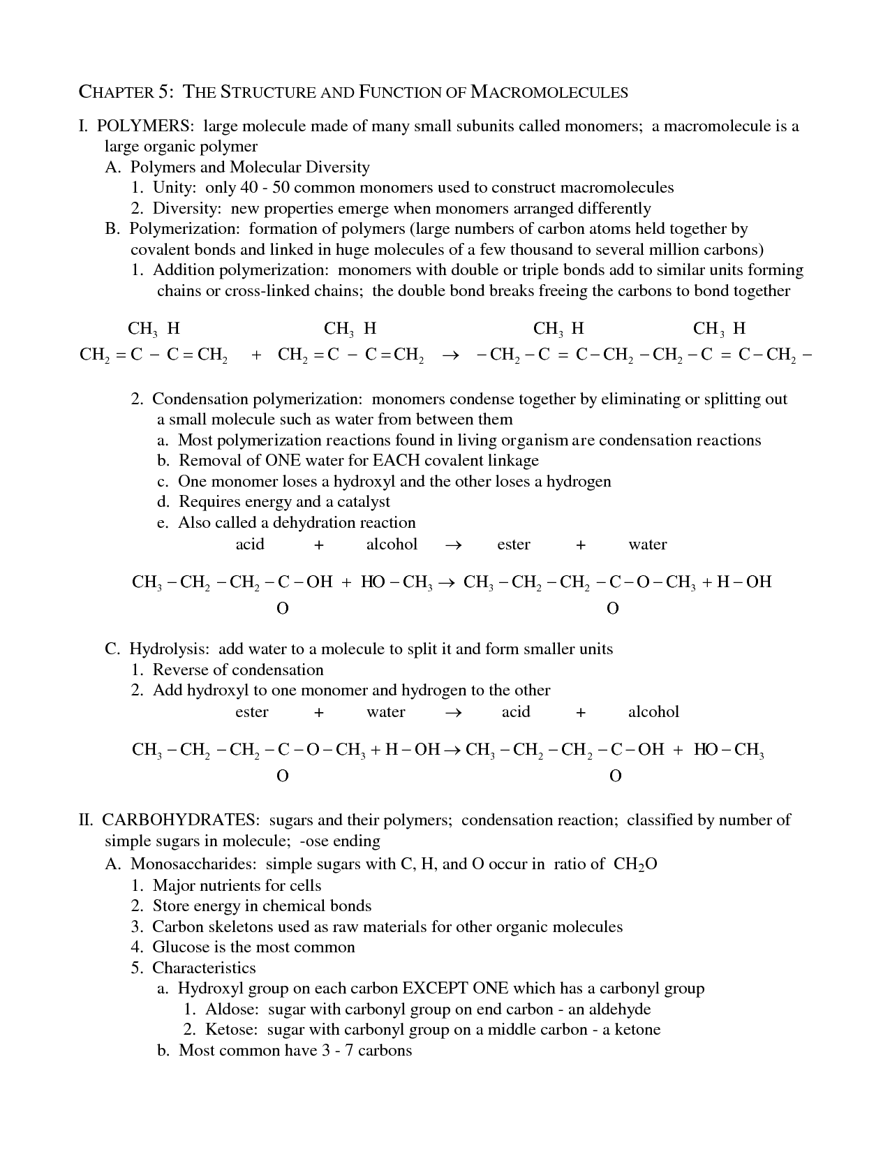 16 Best Images Of Protein Biology Worksheet