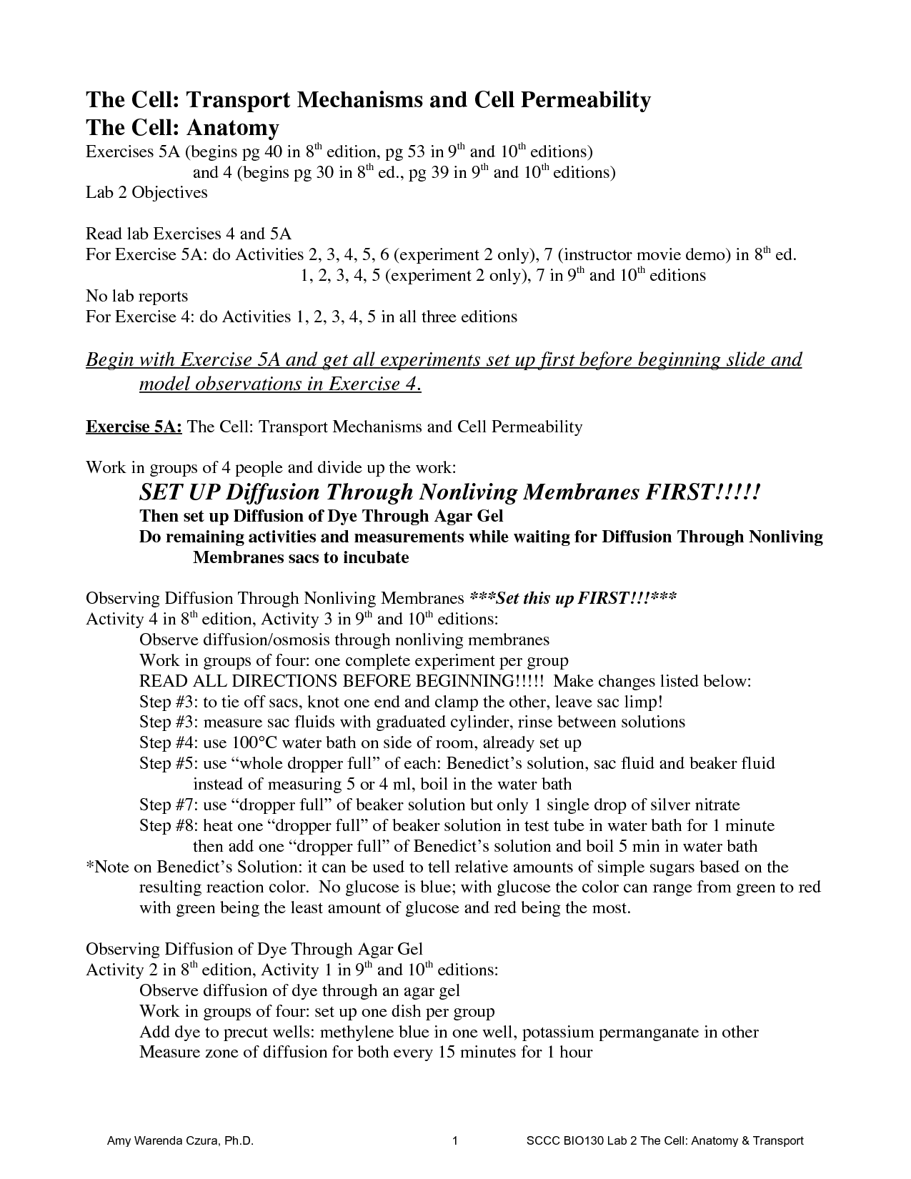 9 Best Images Of Lab Report Worksheet