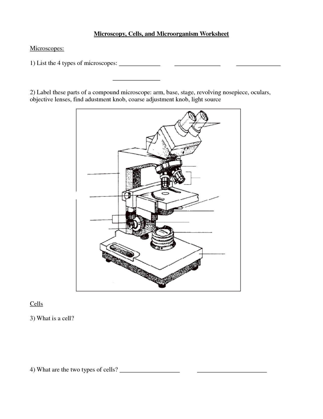 15 Best Images Of Parts Of A Cell Worksheet