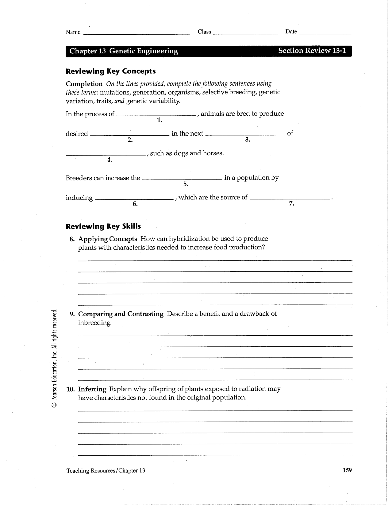 35 Dragon Genetics Worksheet Answer Key
