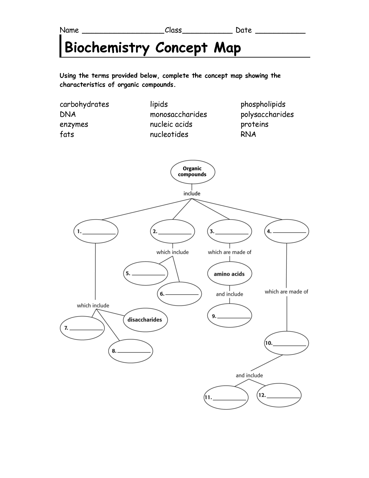 10 Best Images Of Nucleic Acid Concept Map Worksheet
