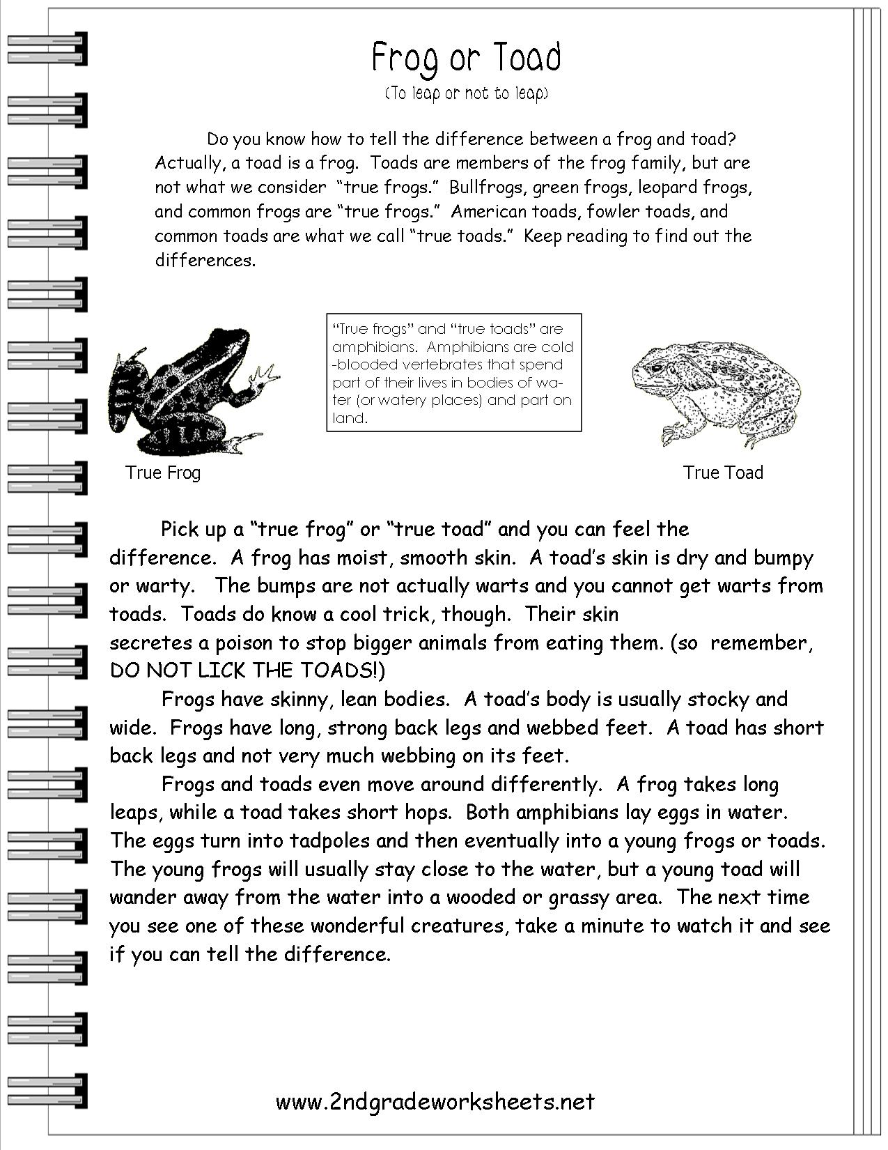 Literacy Homework Information Texts