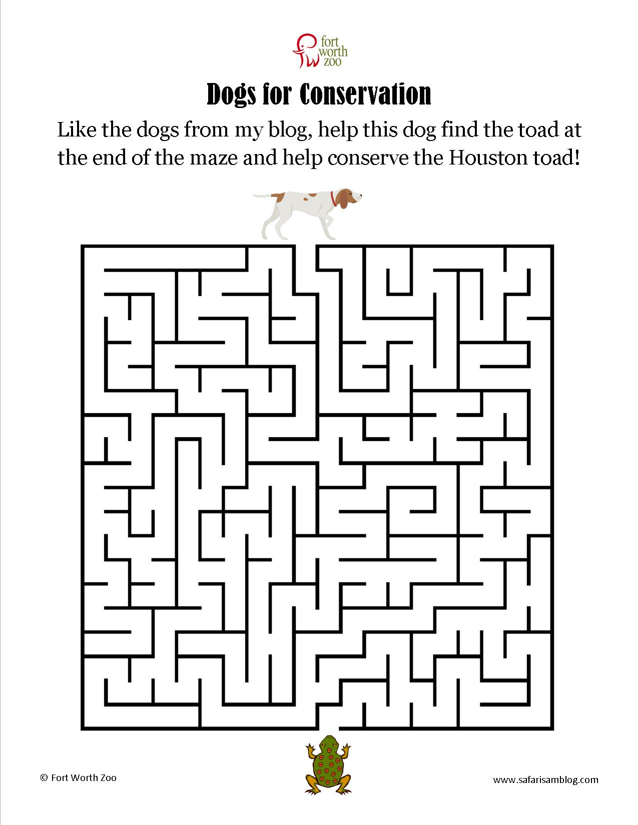 First Grade Maze Worksheets