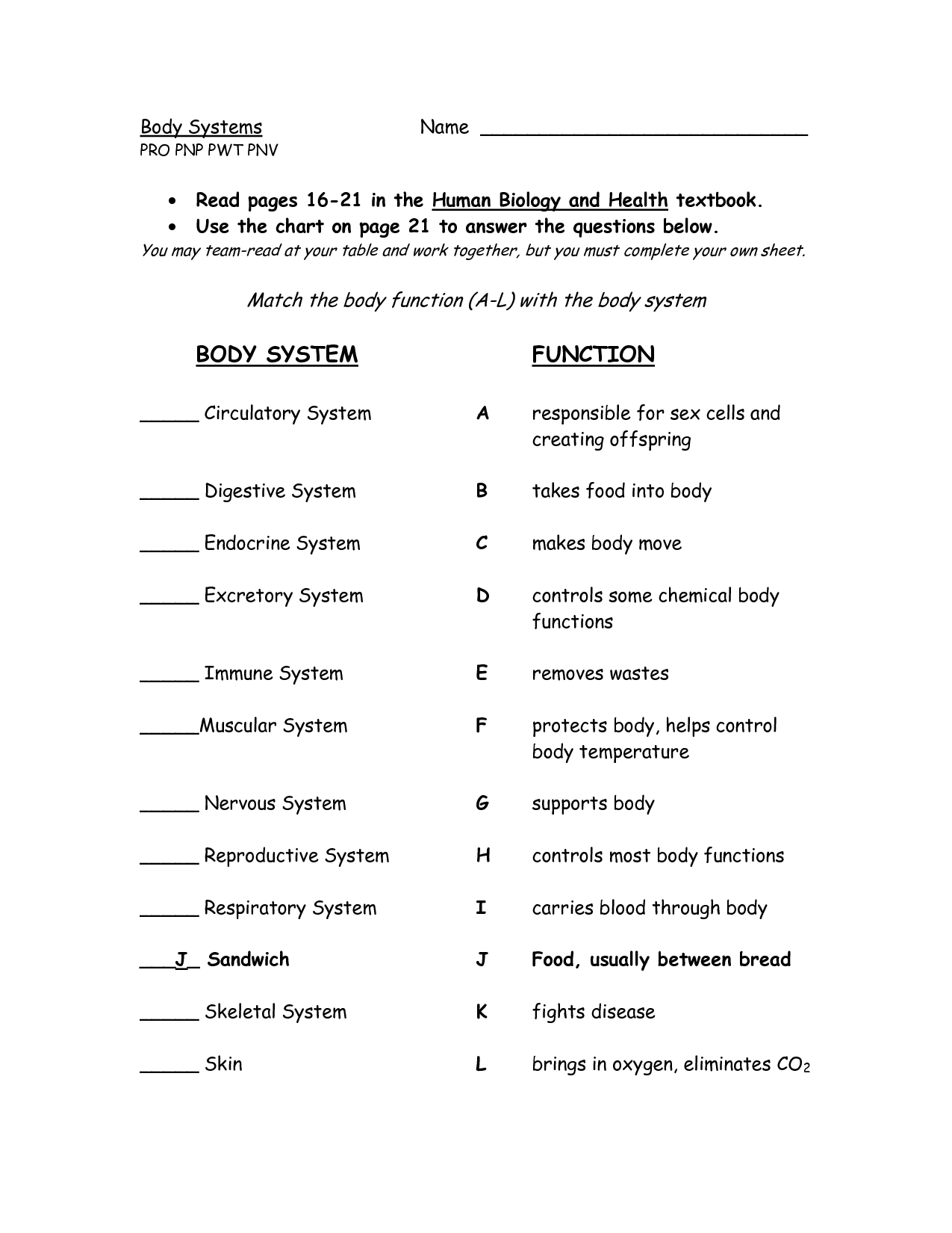 19 Best Images Of Organ System Worksheets High School