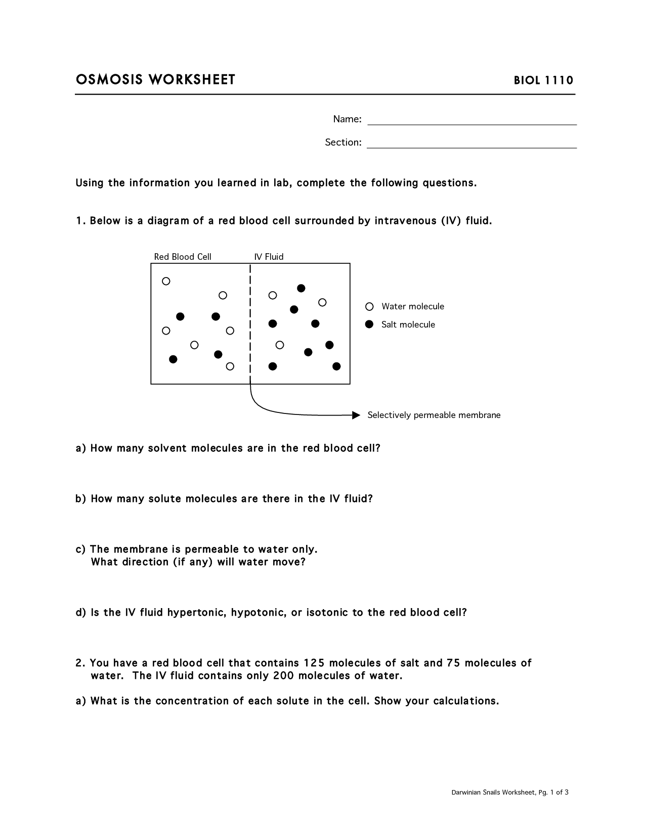 Osmosis And Diffusion Practice Worksheet Answers 16 Best