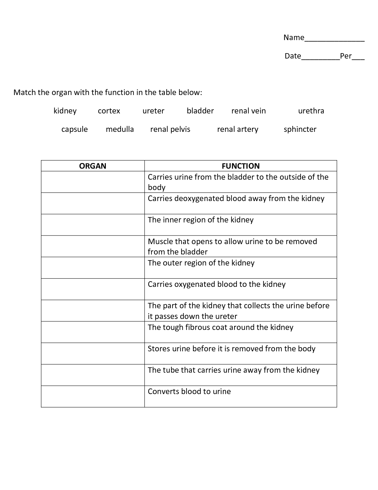 16 Best Images Of Function Table Worksheets Middle School
