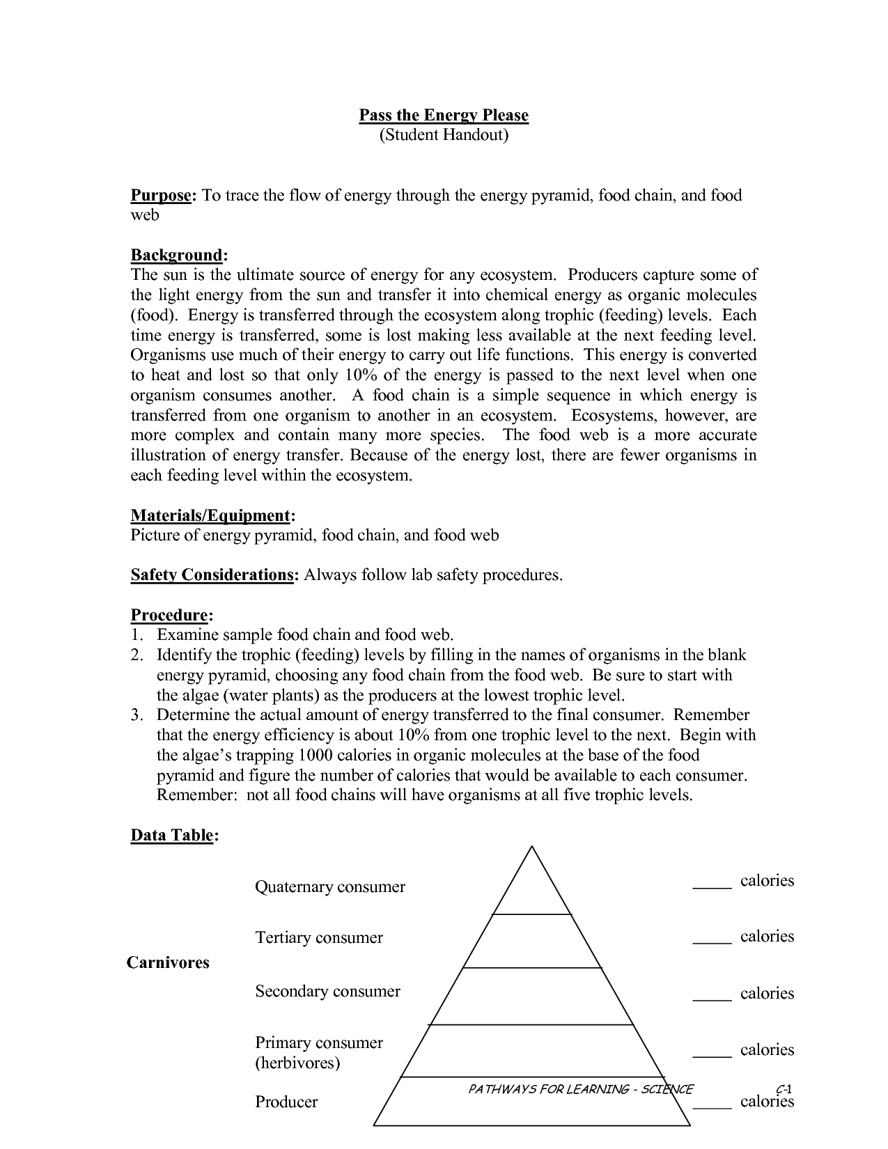 Photosynthesis Worksheet Answers For Middle School