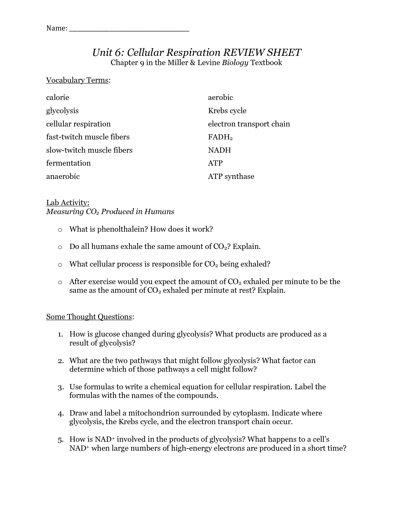 Respiration Worksheet Answer Key