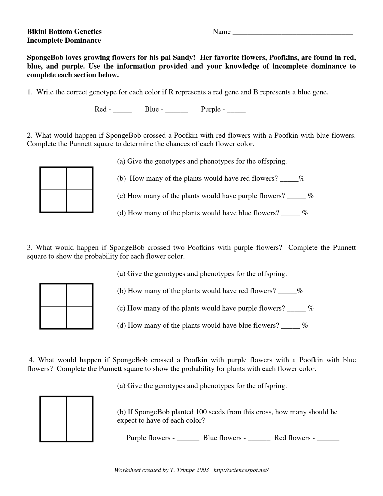 Spongebob Dihybrid Crosses Worksheet Answers