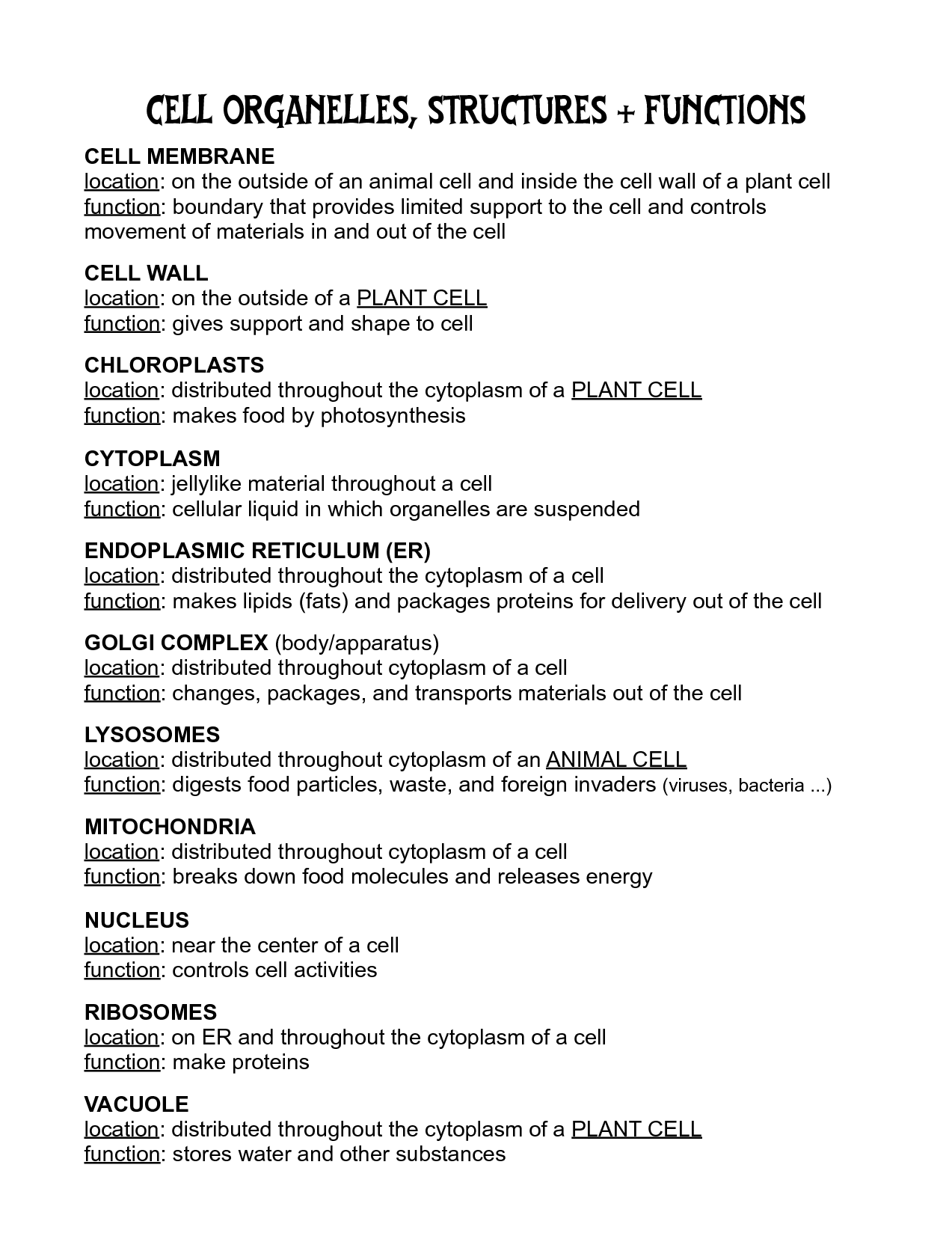 16 Best Images Of Cells And Their Organelles Worksheet