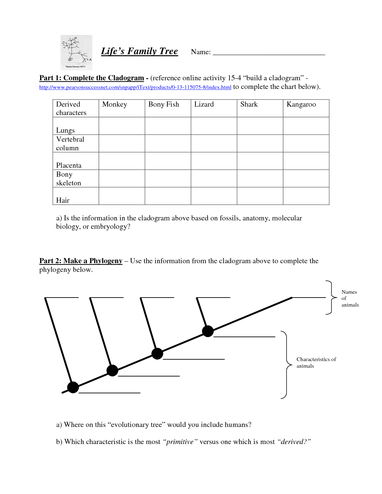 Cladogram Biology Worksheet