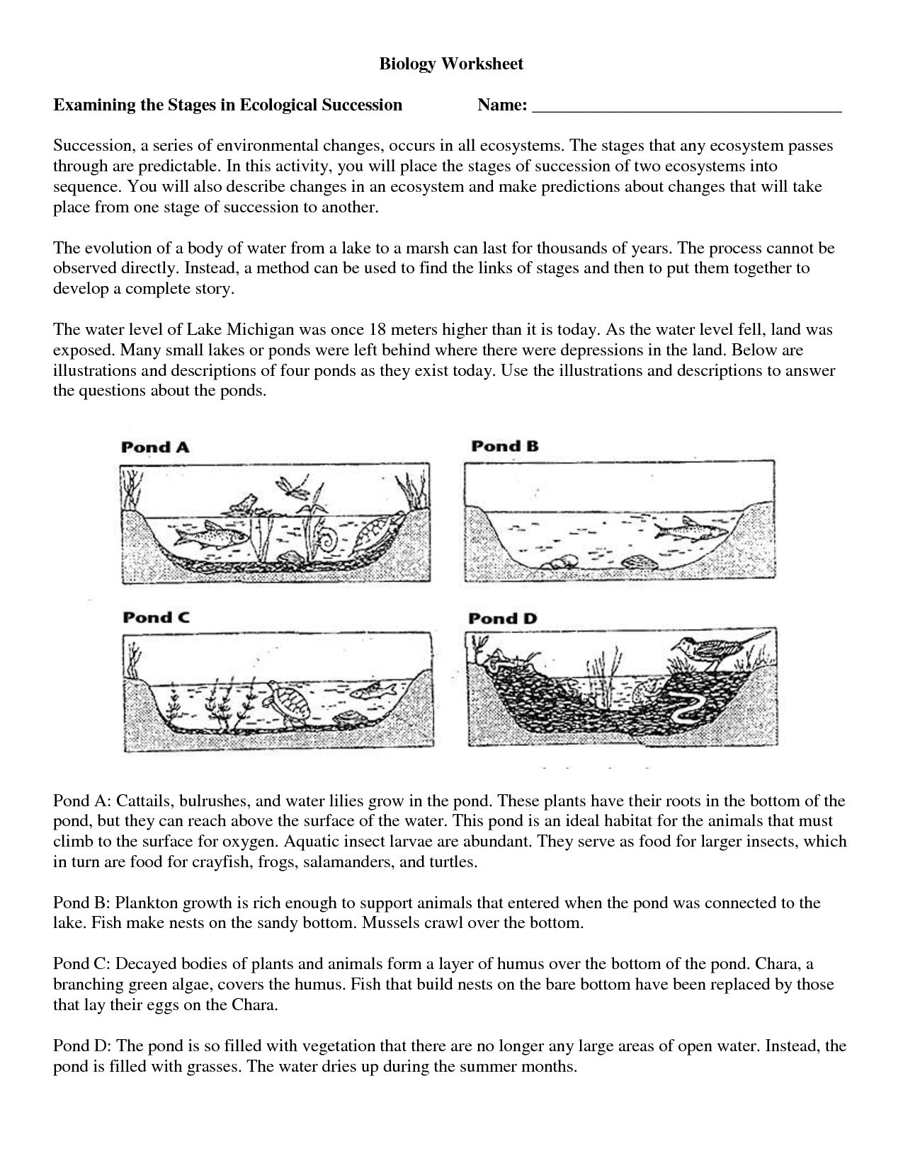 16 Best Images Of Science Worksheets For High School With