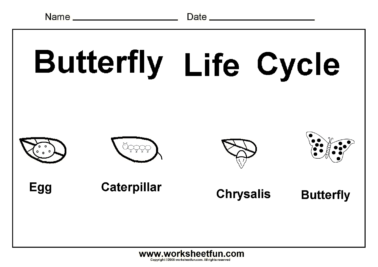 13 Best Images Of Free Butterfly Worksheets Kindergarten