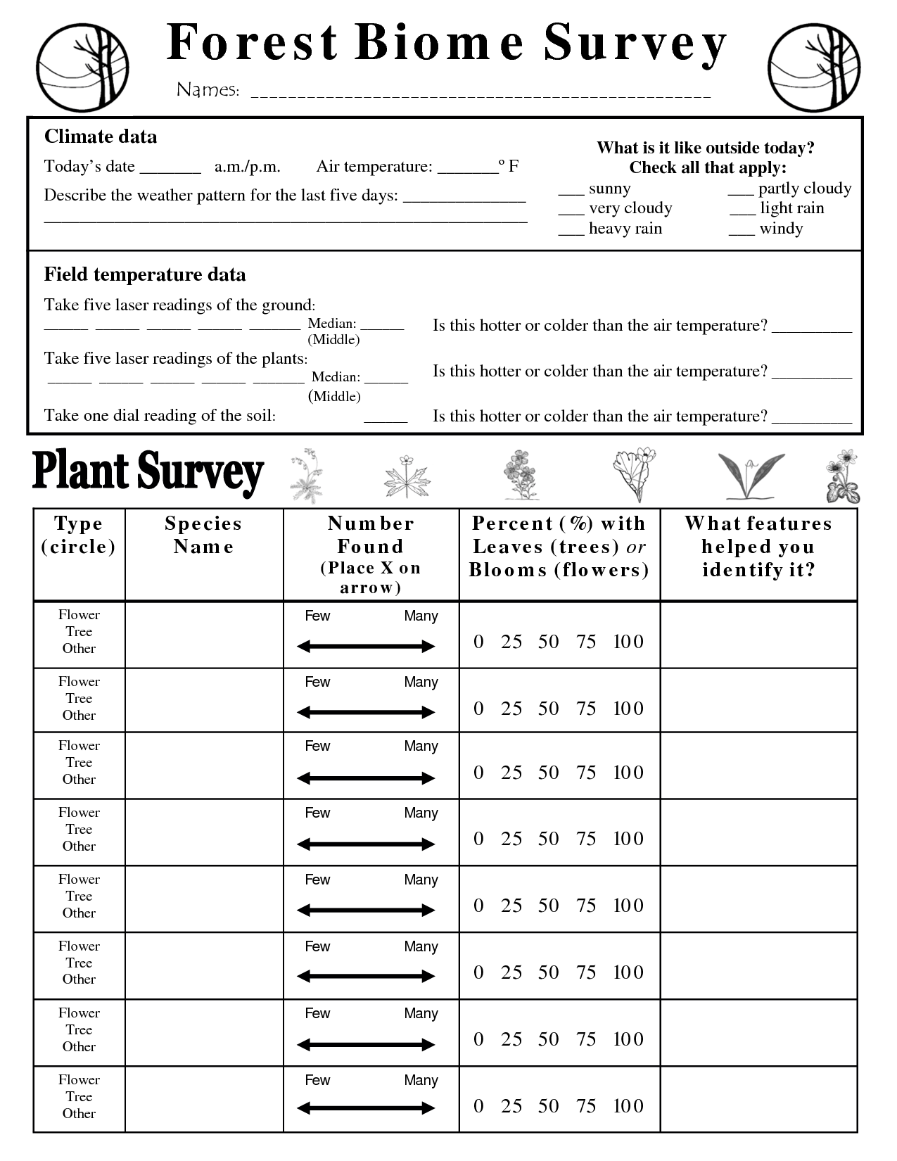 7 Best Images Of Biome Worksheets High School