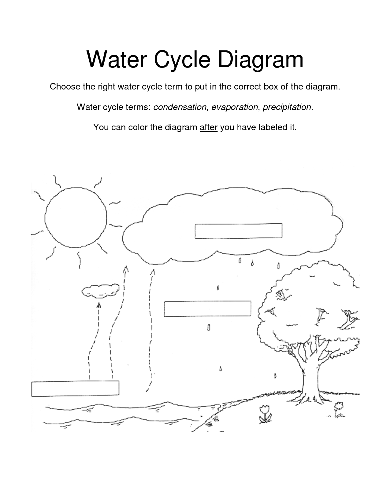 Color Diagram Worksheet