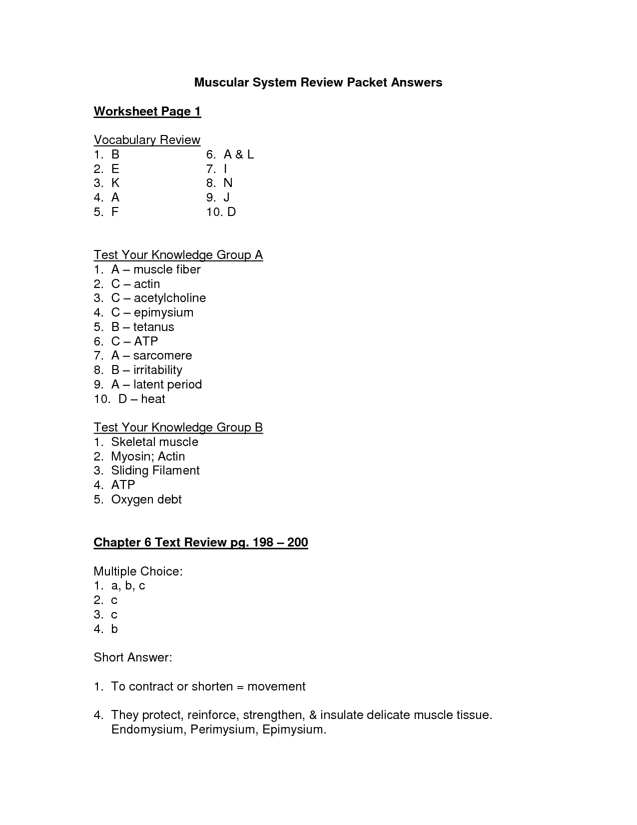 Muscle Movements Worksheet