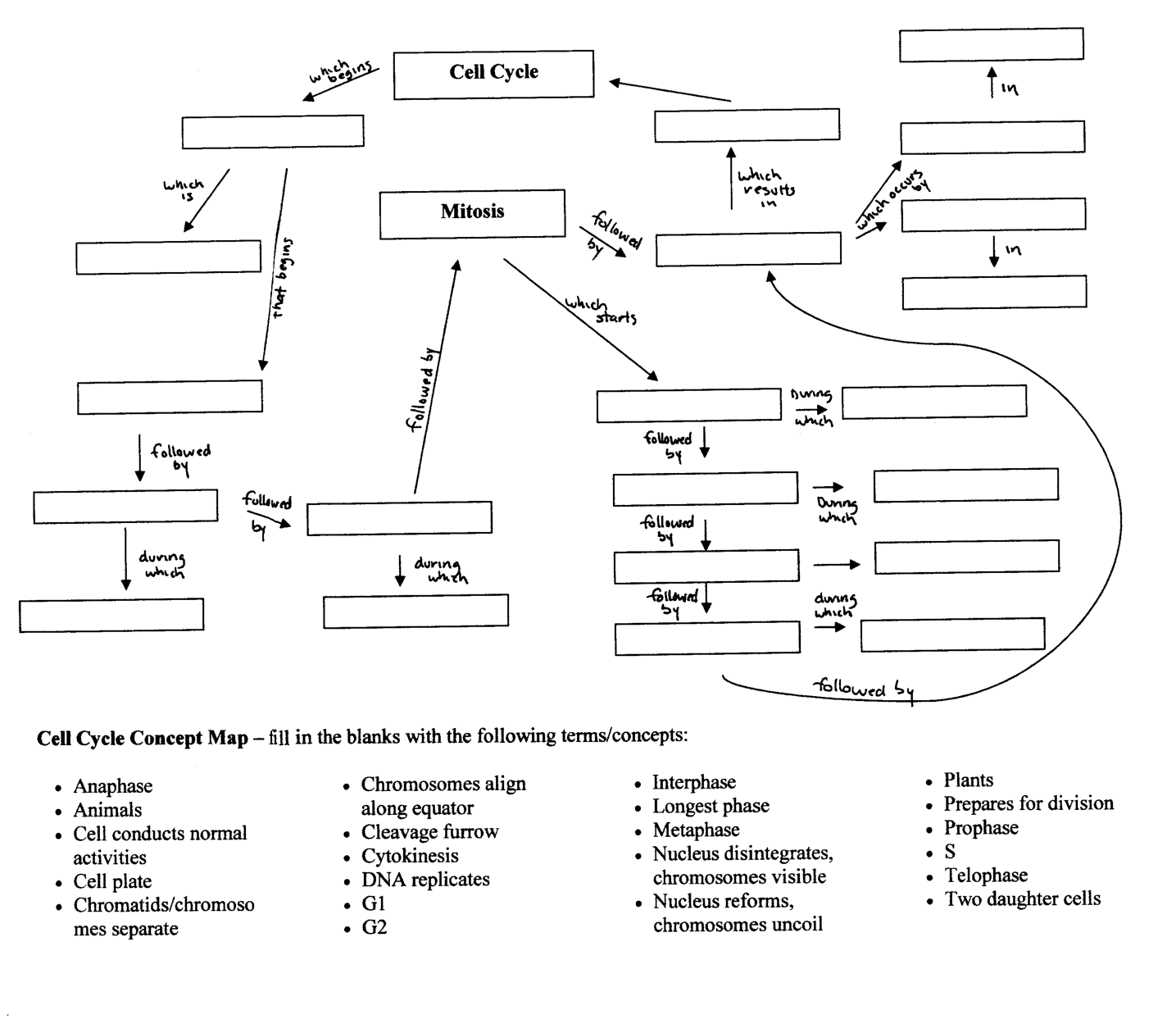 Protein Synthesis Concept Map Worksheet