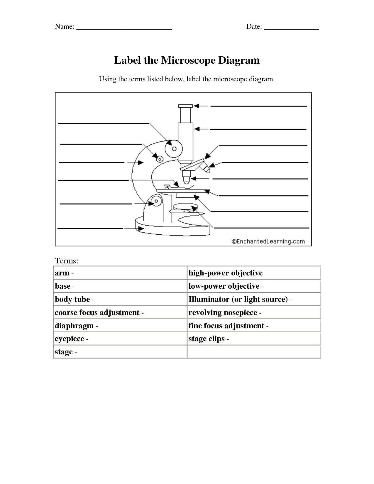 12 Best Images Of Microscope Parts Worksheet Answers