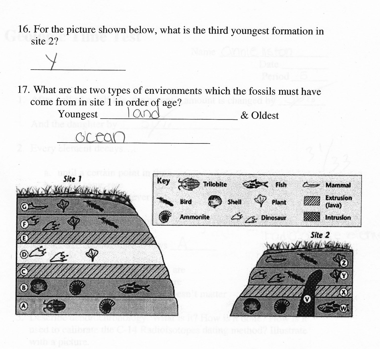 Worksheet All About Fossils