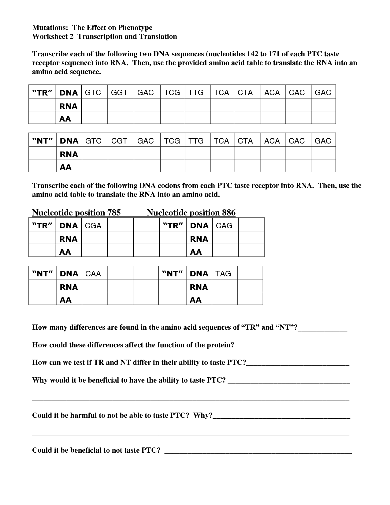 18 Best Images Of Rna And Transcription Worksheet Answers