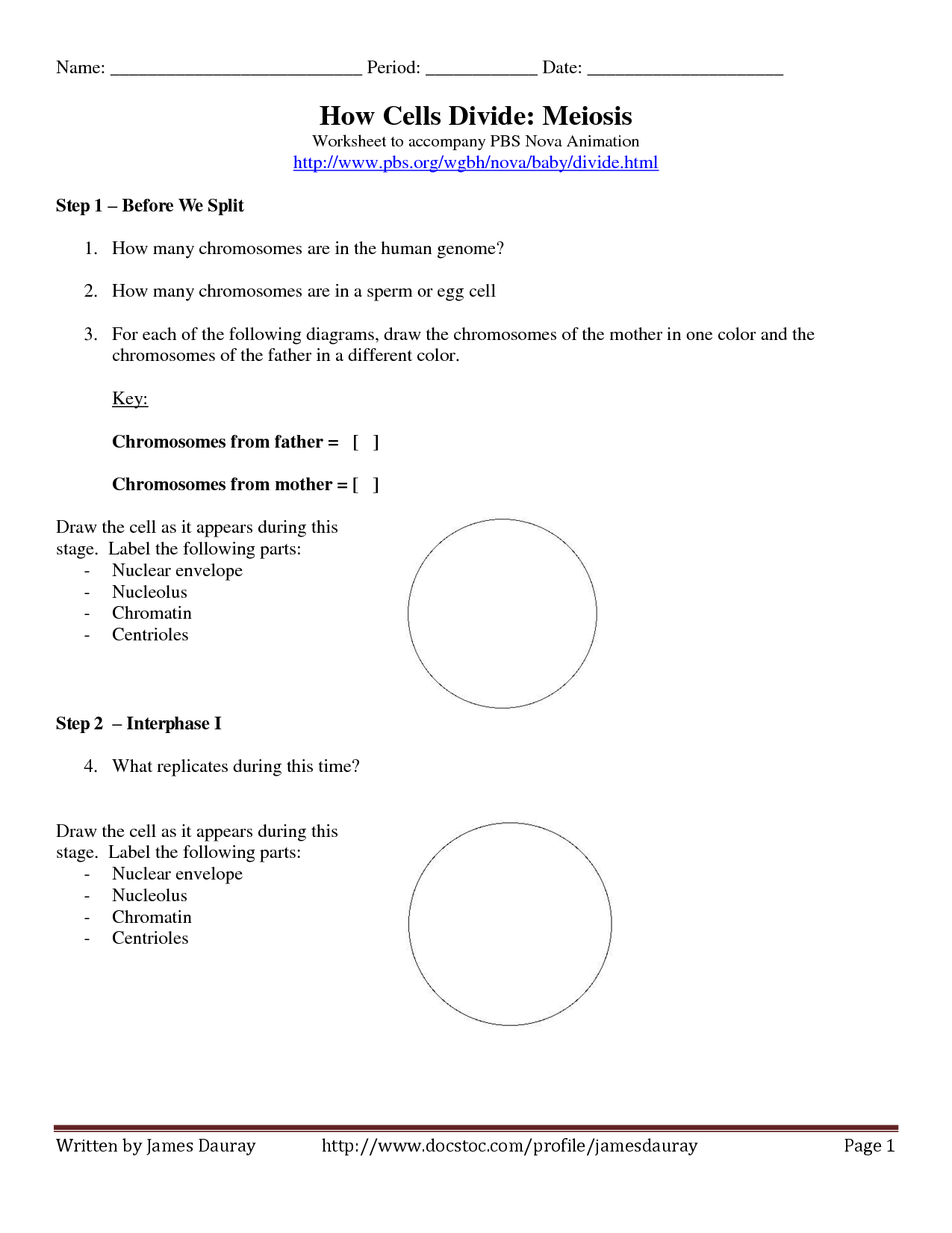 14 Best Images Of Dna Workshop Pbs Worksheet Answers