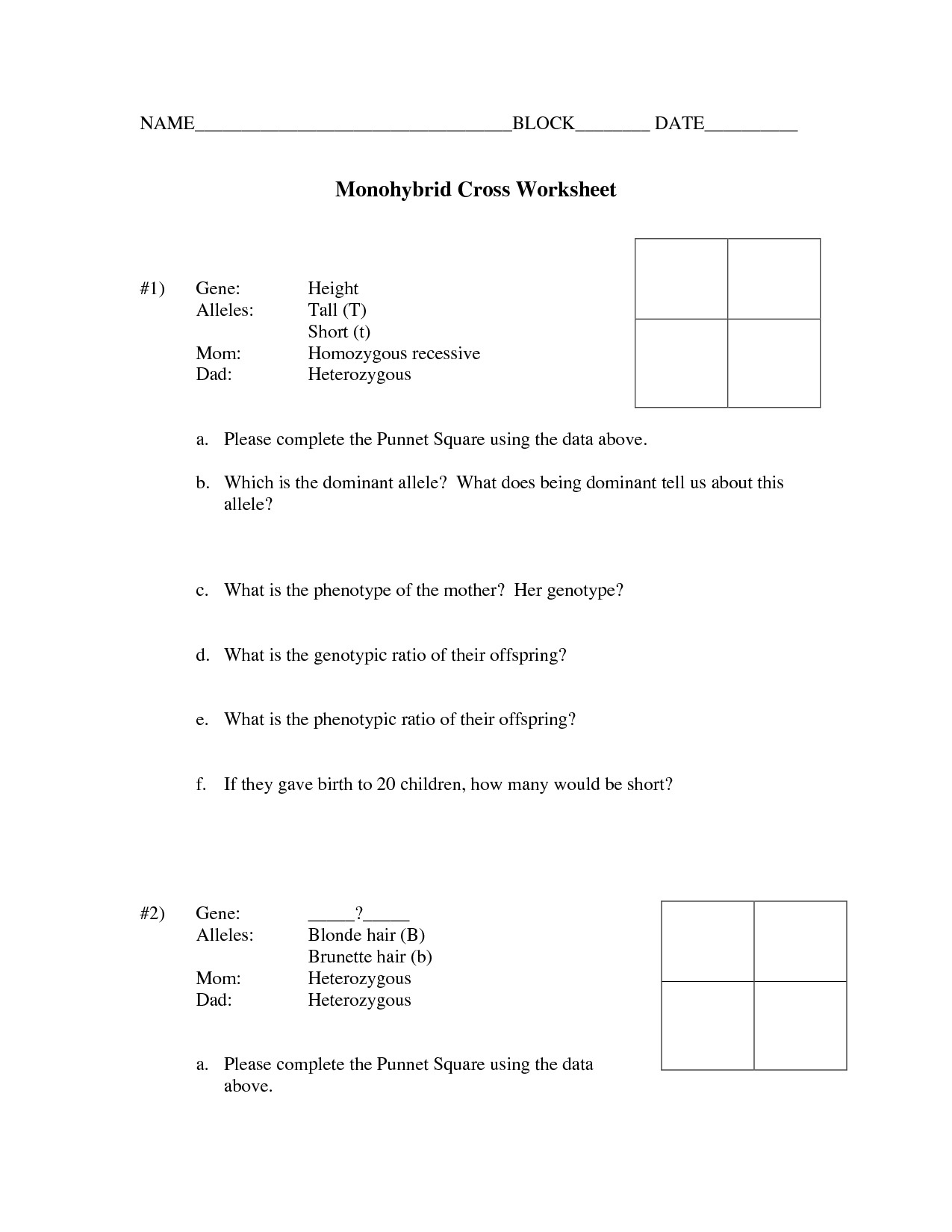 15 Best Images Of Genetic Punnett Squares Worksheets