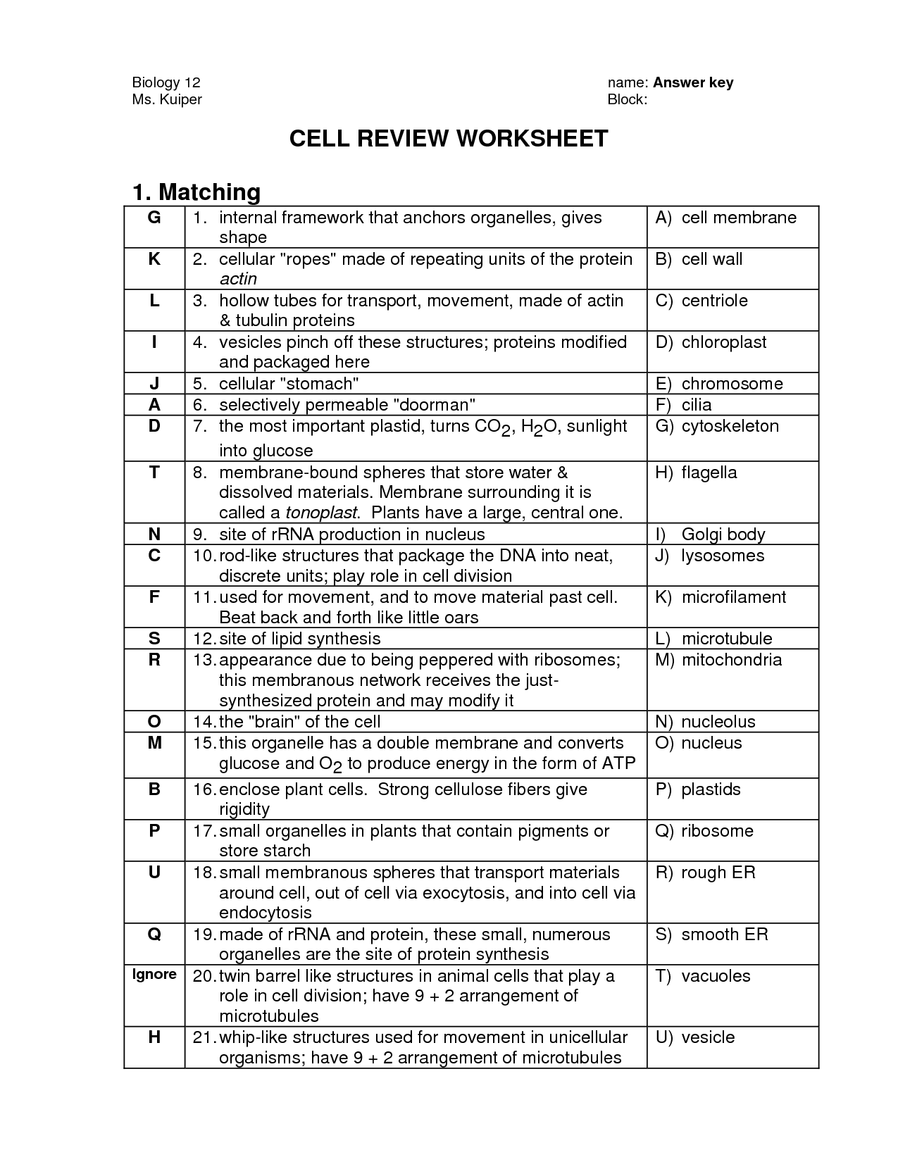 Cell Organelle Review Worksheet