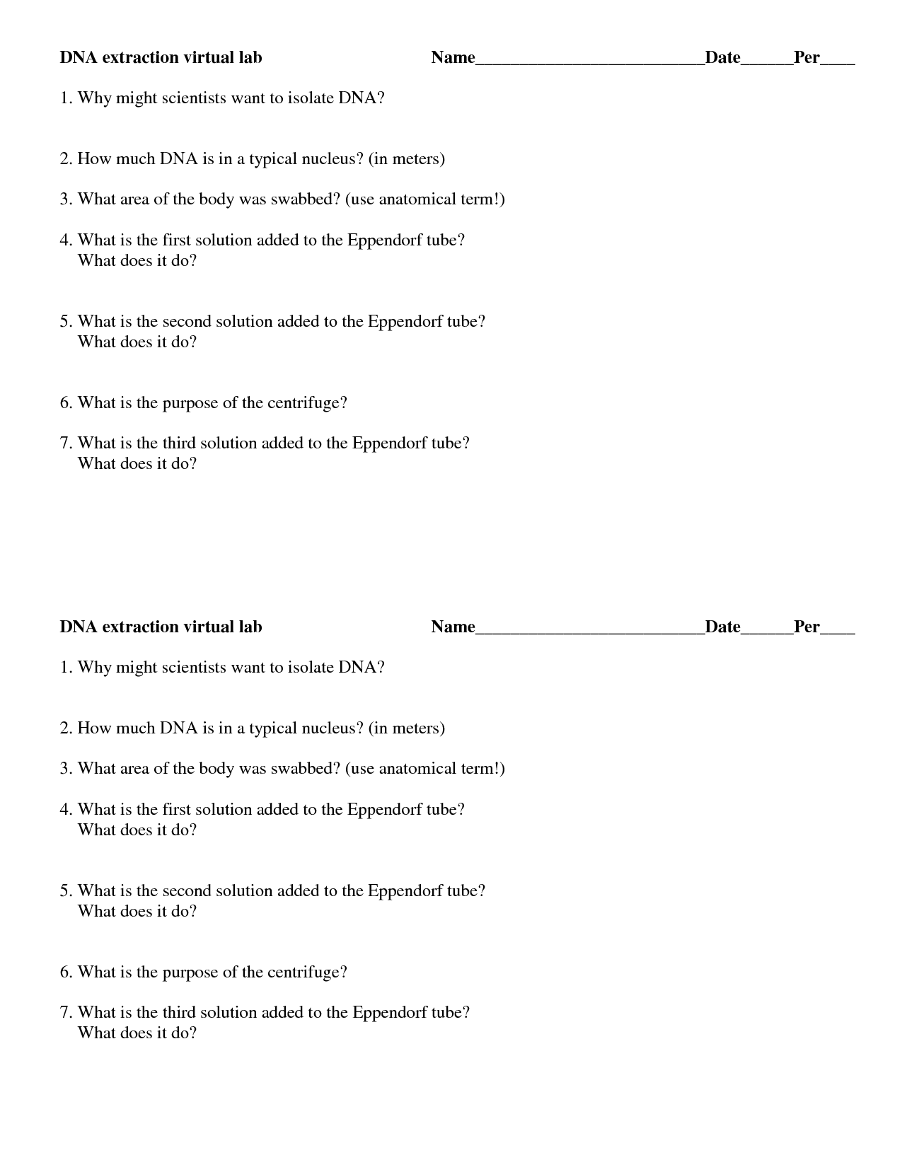 Dna Extraction Virtual Lab Worksheet