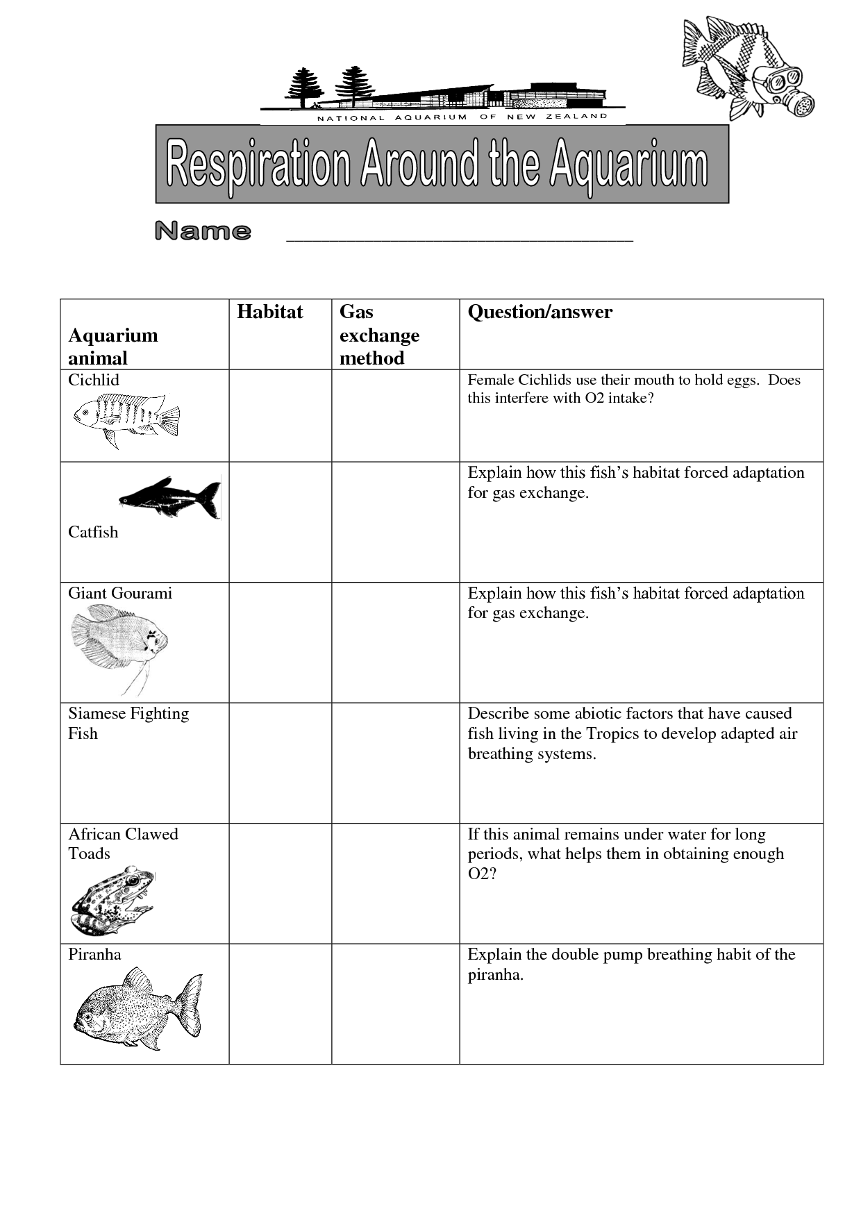 Bird Habitat Worksheet