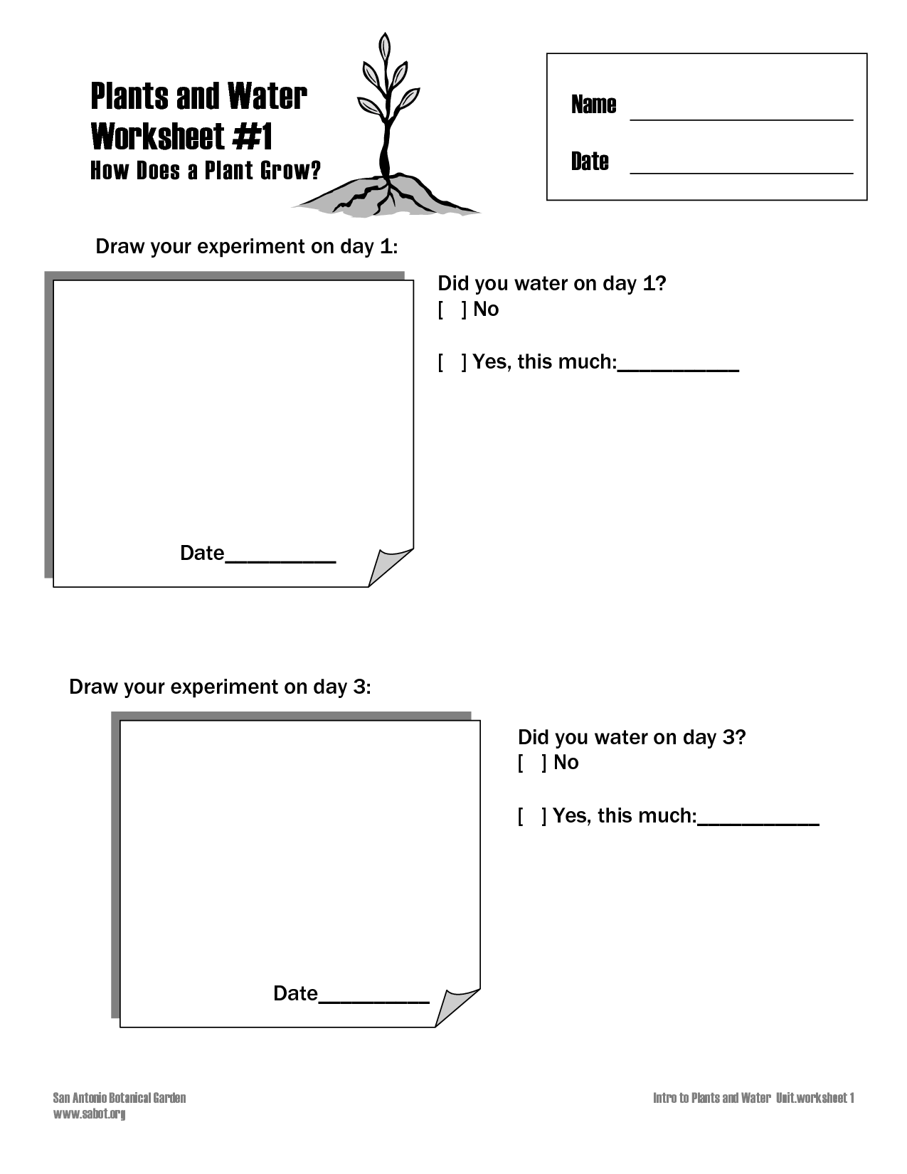 9 Best Images Of How Do Plants Grow Worksheet